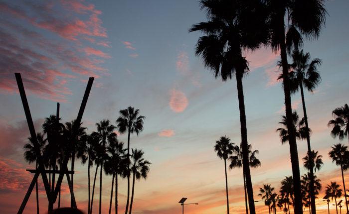 Vexit , Venice, CA